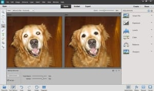 PhotoShop Elements 12 Mac